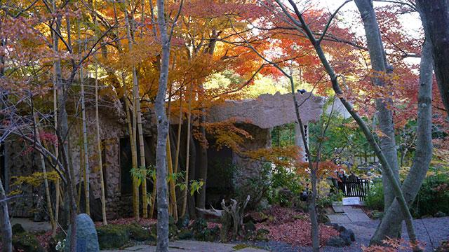 庭園(久保田一竹美術館)