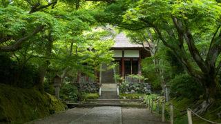 京都 常寂光寺小倉山の中腹に建つ塀のない寺院