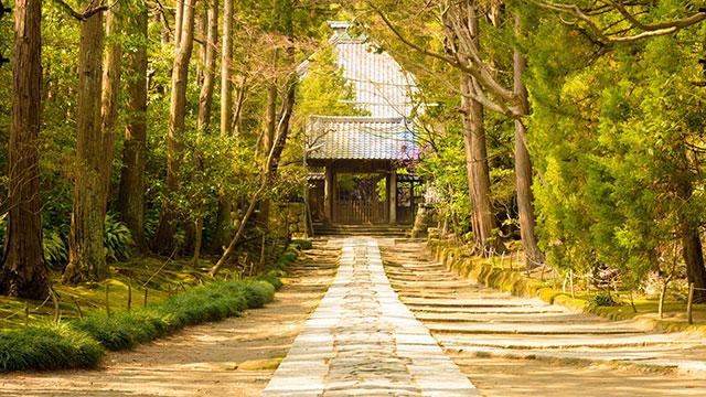 参道(壽福寺)