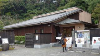 鎌倉市川喜多映画記念館映画好き必見の記念館