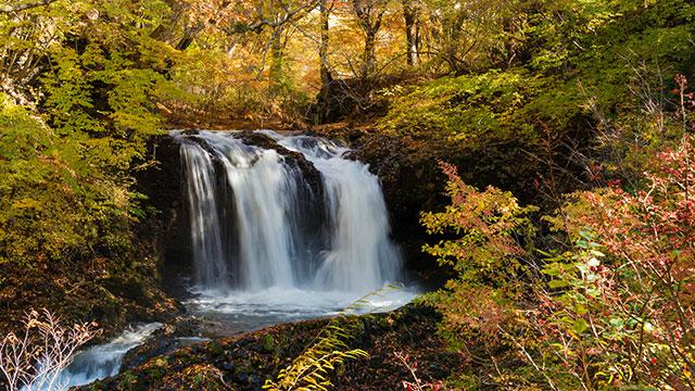 秋(鐘山の滝)