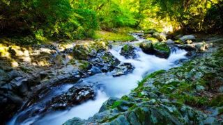 河津七滝七つの滝を一度に見られる静かな温泉地