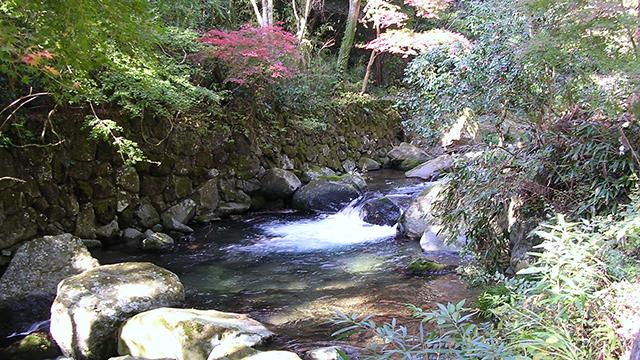 えび滝(河津七滝)
