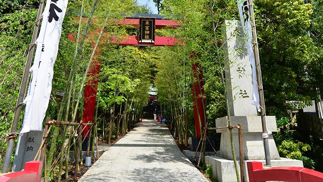 参道(来宮神社)