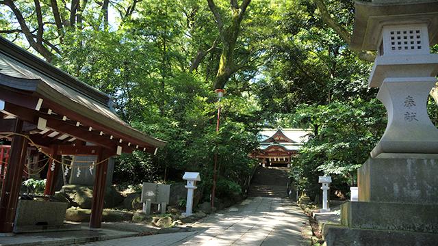境内(来宮神社)