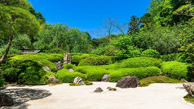 枯山水庭園(明月院)