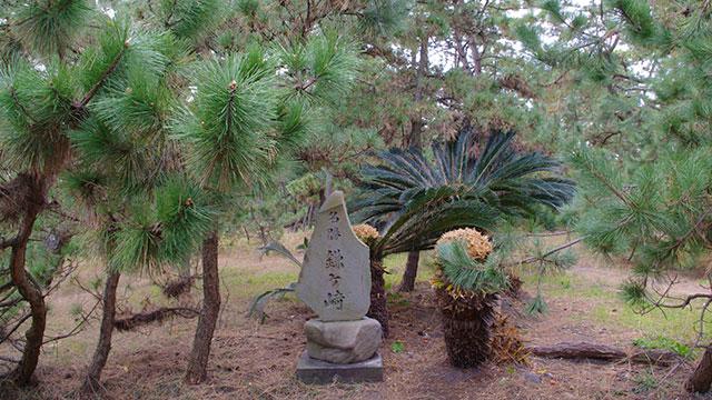 鎌ヶ崎(三保の松原)