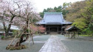 鎌倉 妙本寺悲劇の一族の菩提を弔う日蓮宗最古の寺院