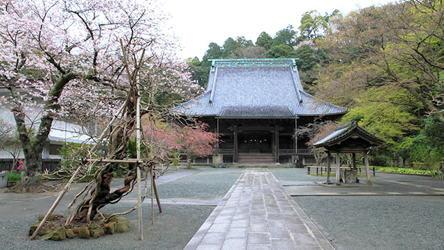 妙本寺(江ノ電観光)