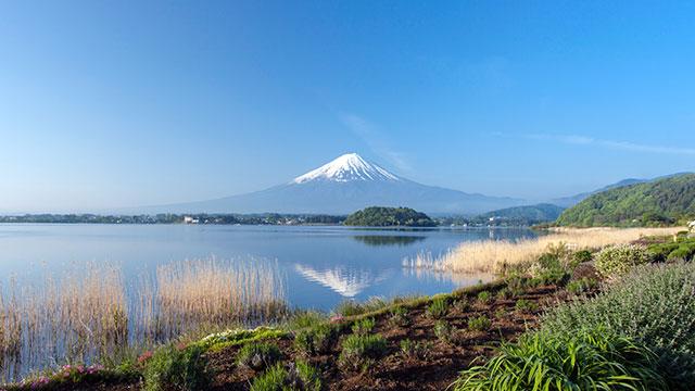 逆さ富士(大石公園)
