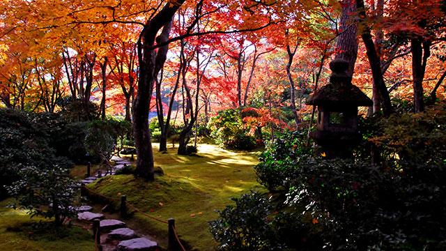 大河内山荘庭園の紅葉(大河内山荘)