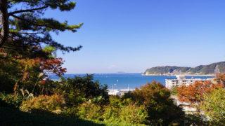 逗子 蘆花記念公園四季折々の草花が美しい景勝地で絶景を望む