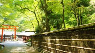京都 嵯峨野観光四季が織り成す優美な自然の中で安らぎのひとときを満喫
