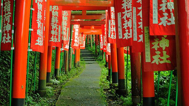 鳥居が長く続く参道(佐助稲荷神社)
