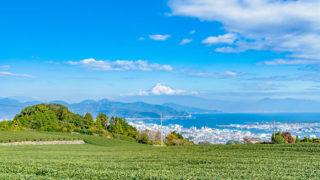 静岡市清水区観光富士山の絶景を望む港町で海の幸やレジャーを満喫