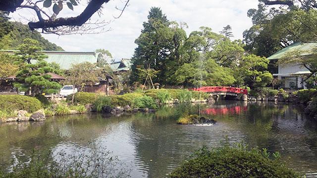 神池(静岡浅間神社)