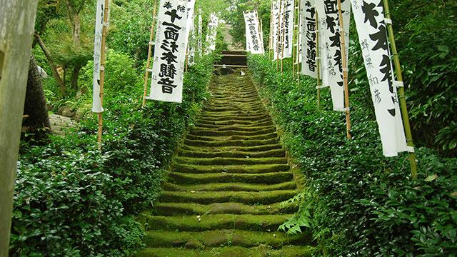 苔の階段(杉本寺)