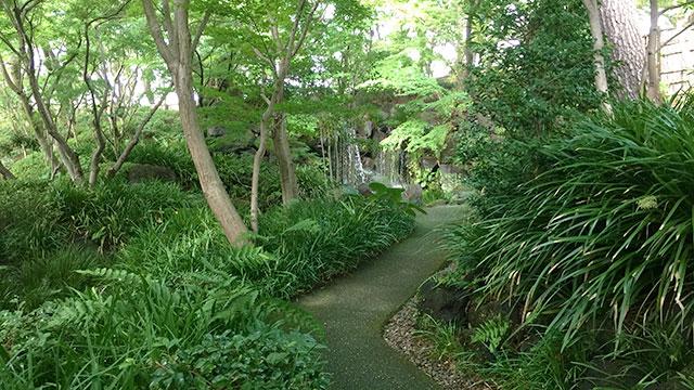 紅葉山庭園-山の庭(駿府城公園)