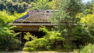 京都 滝口寺平家物語の悲恋伝説が残る風情ある寺院