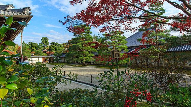 庭園(天龍寺)