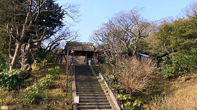 鎌倉街道から山門を見上げる(東慶寺)