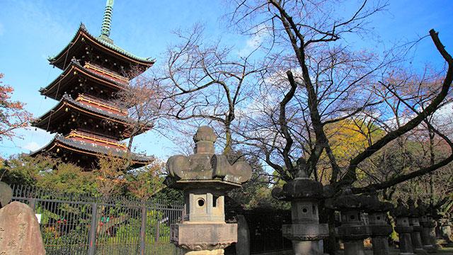 五重塔(上野寛永寺)