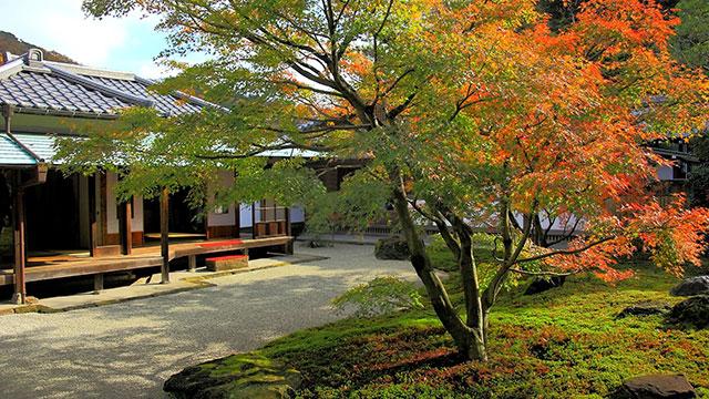 庭園(長寿寺)