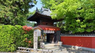 京都 長建寺弁財天を本尊として祀っている枝垂桜が美しい寺院