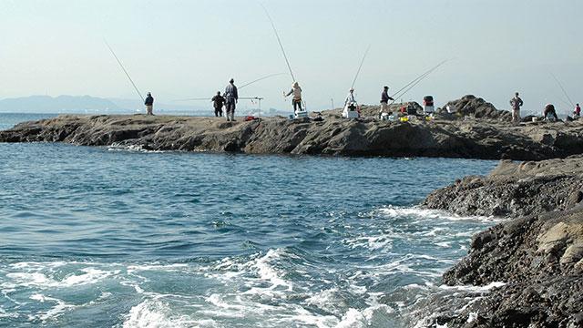 稚児ヶ淵の磯釣り(江の島)