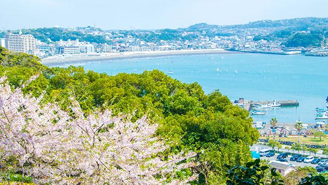 春(江の島)