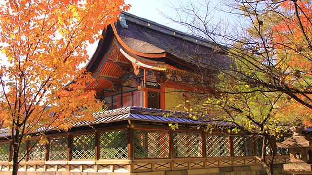 本殿(御香宮神社)