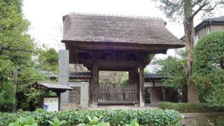 鎌倉 極楽寺サルスベリとアジサイが咲く風情ある寺院