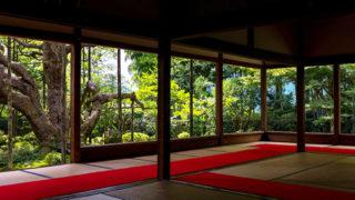 京都 宝泉院樹齢700年を超える松と三つの庭が美しい寺院