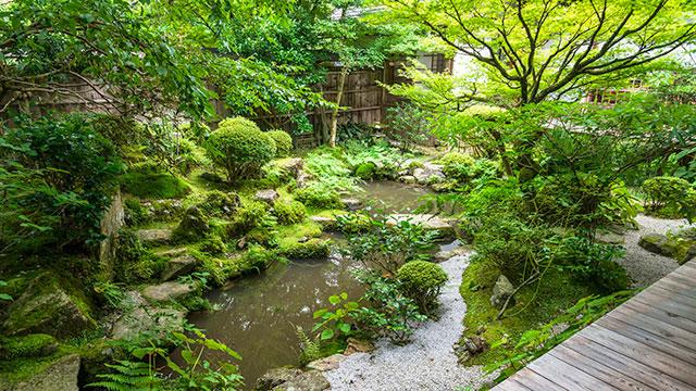 鶴亀庭園(宝泉院)
