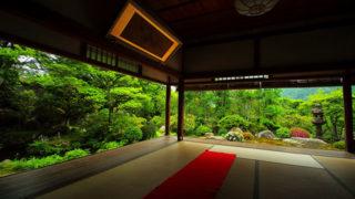 京都 実光院秋から春まで咲く桜が有名な勝林院の子院