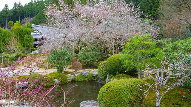 旧理覚院庭園(実光院)