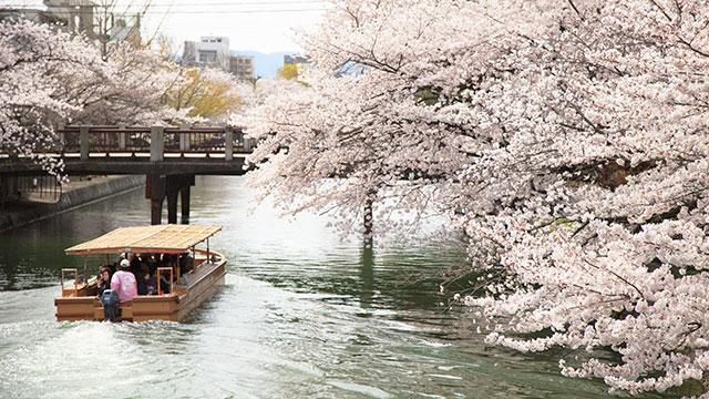 春(十石舟)