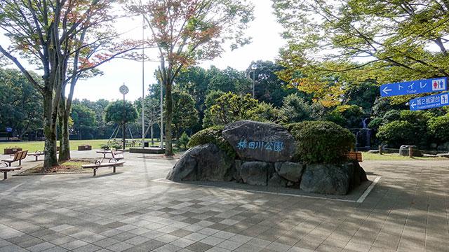 柿田川公園(清水町観光)