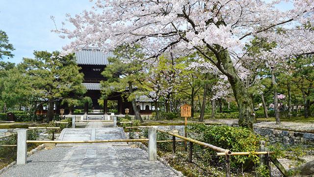 建仁寺(八坂通り)