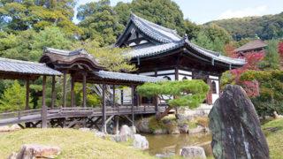京都 高台寺枝垂桜と紅葉が見事に映える蒔絵の寺