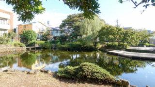 三島 菰池公園桜川の水源が湧き出る憩いの公園