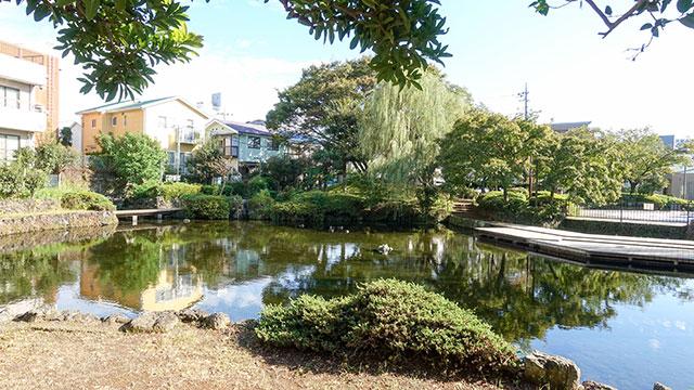 菰池公園(三島観光)
