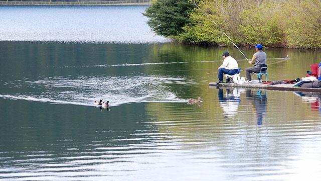 釣り(田貫湖)