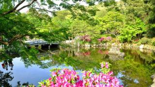 京都 円山公園桜や紅葉が美しい京都市最古の公園