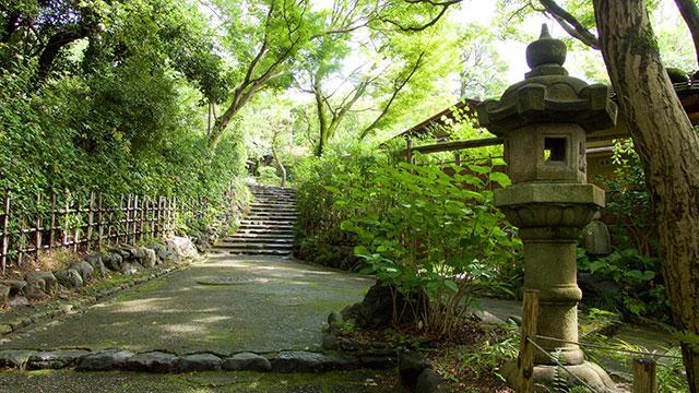 散策路(円山公園)