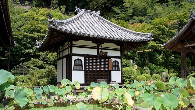 阿弥陀堂(三室戸寺)