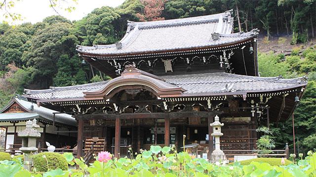 本堂(三室戸寺)