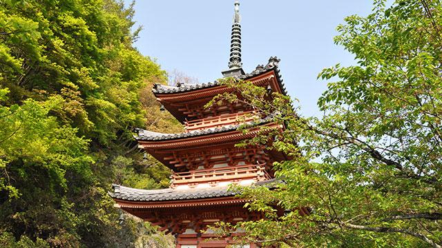 三重塔(三室戸寺)