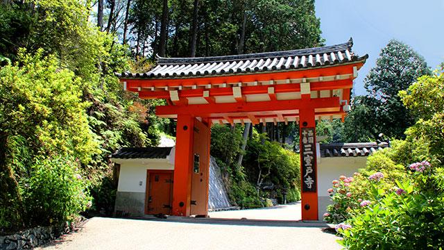 山門(三室戸寺)