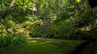 鎌倉 妙法寺日蓮の草庵跡に造られた苔の美しい寺